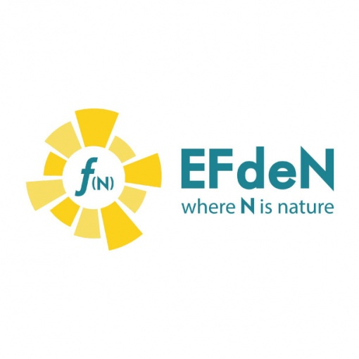 Logo of team EFdeN.