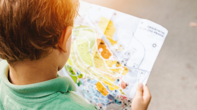Child looking on map.